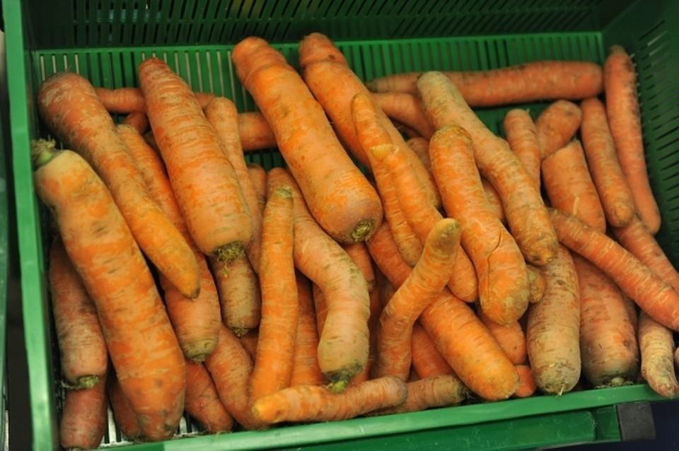 Цена килограмма моркови почти достигла 100 рублей