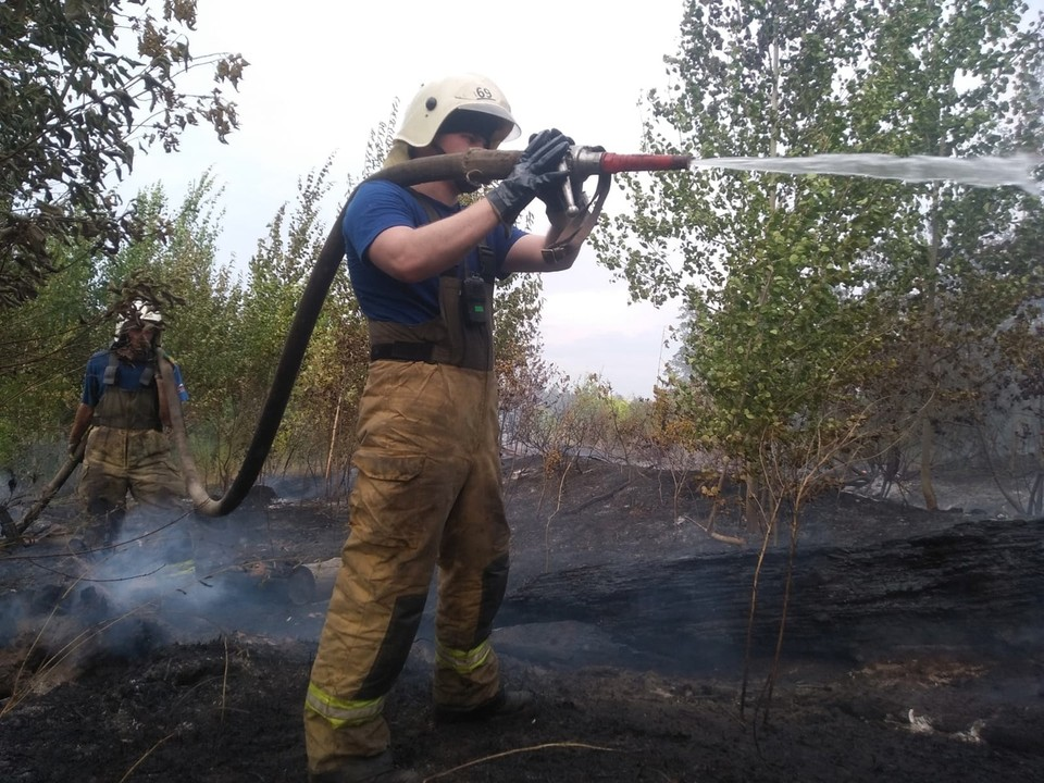 Крупный лесной пожар произошел в Тольятти. Фото - ГУ МЧС России по Самарской области