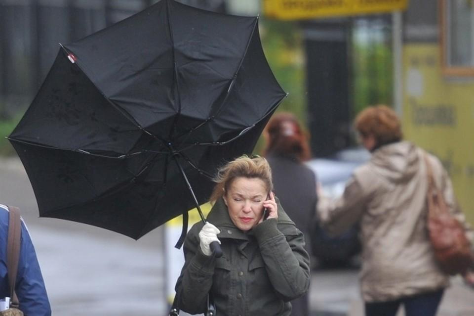 В ближайшие пару дней ожидать хорошей погоды новосибирцам не придется.