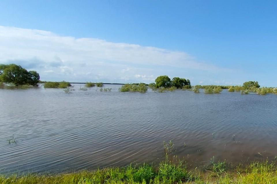 Субтропическая жара продержится в Хабаровске еще неделю