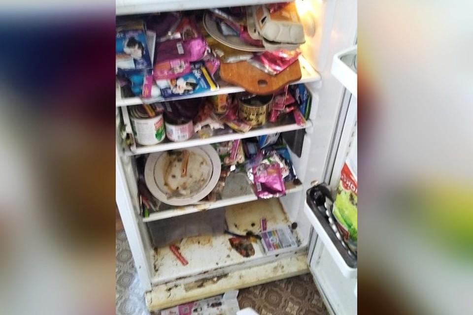 Холодильник использовался в качестве помойного ведра. Фото: соцсети
