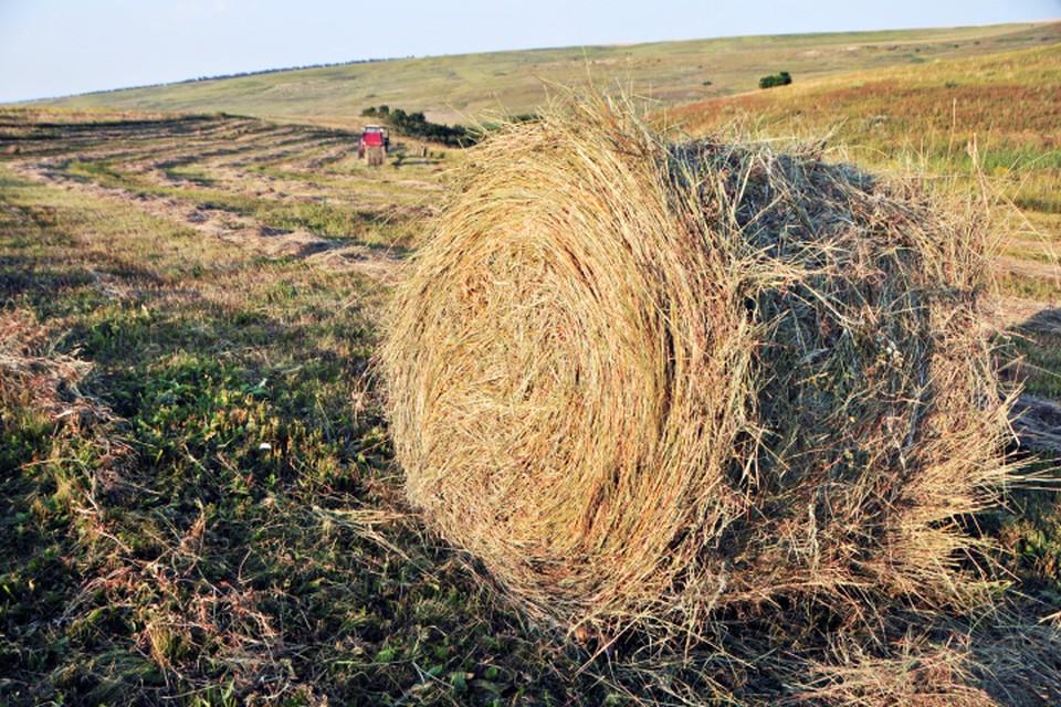 Мужчина спал в одном из стогов сена в момент, когда на поле проходили работы.