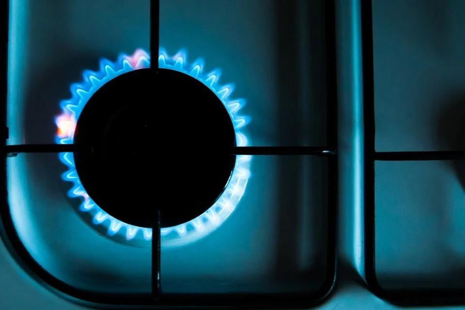 Путин и Лукашенко договорились о цене на российский газ для Беларуси на 2022 год. Фото: pixabay