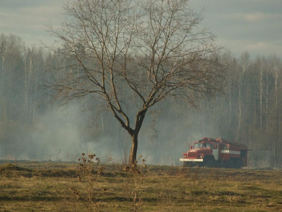 Возможно, причина в лесных пожарах в других регионах