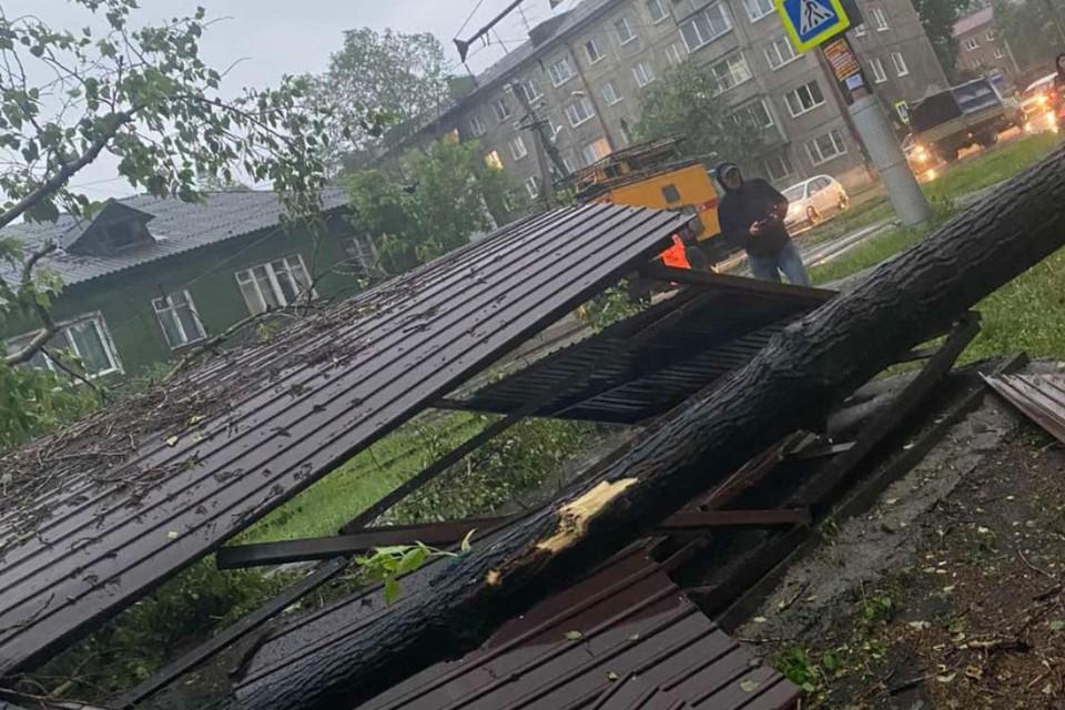 Остановка, на которую рухнул тополь. Фото: Юлия Петрова