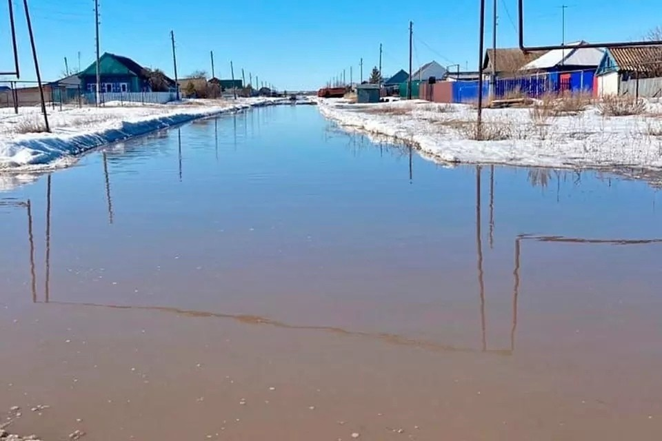 """Грунтовые воды на определенном под строительство крематория участке залегают очень высоко. Фото: предоставлено """"Комсомолке"""""""