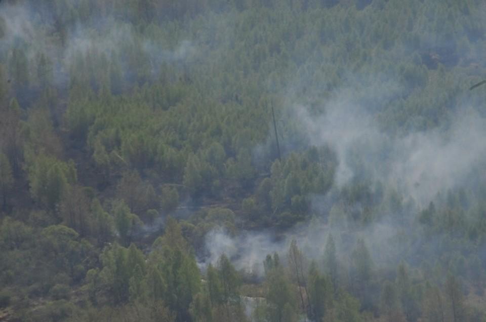 Пожар торфяников в Пермском крае пока не потушен.