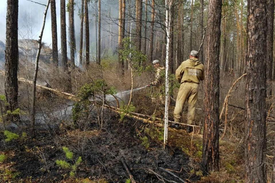 25 лесных пожаров действуют в Иркутской области