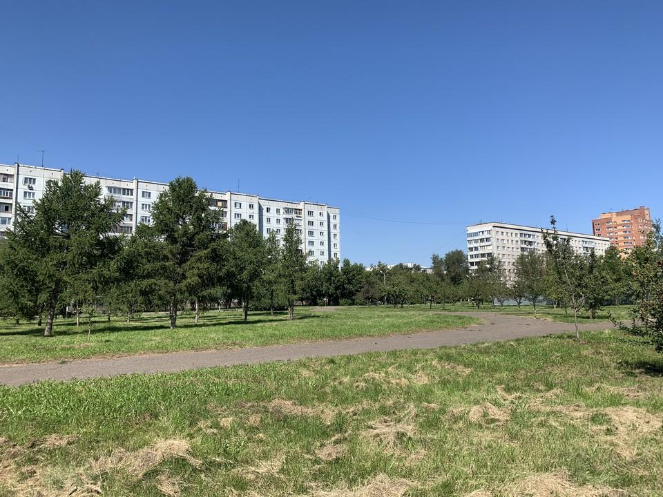 Высокий берег Енисея на проспекте Ульяновский скоро благоустроят. Фото: администрация Советского района