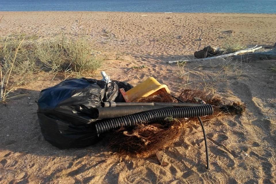 Во время шторма море выбрасывает на берег то, что в него попадает.