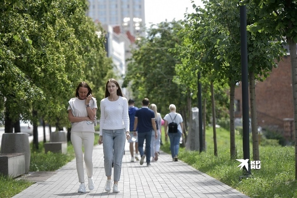 Зеленые насаждения в городах Урала нуждаются в обновлении