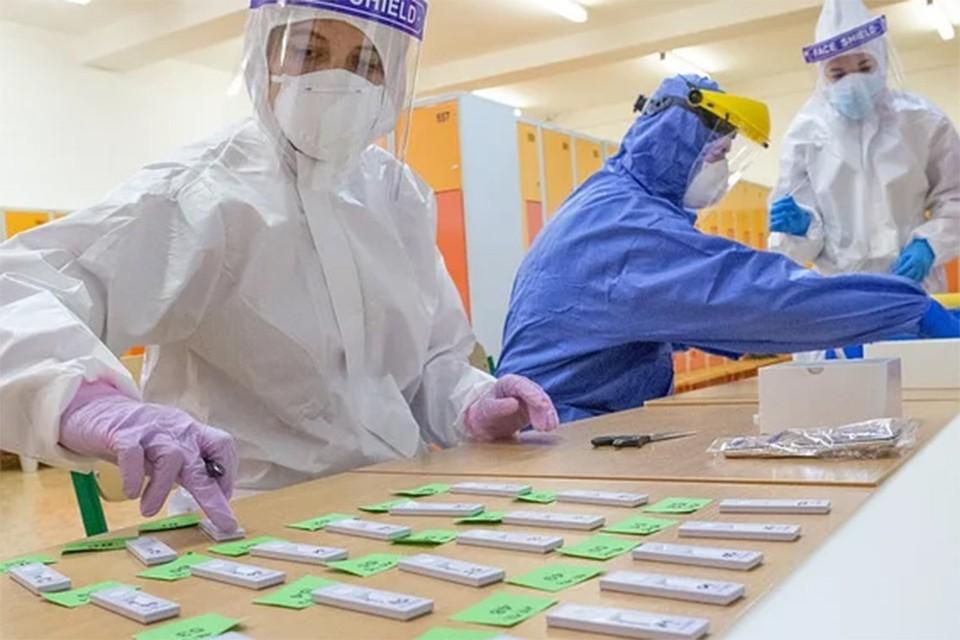 От чего зависит уровень антител у переболевших коронавирусом, рассказали ученые. Фото: pixabay