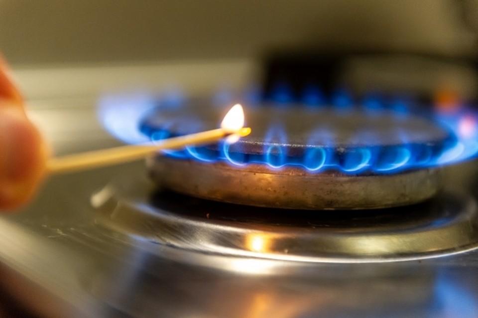 К границам домовладений газ будут подводить бесплатно.
