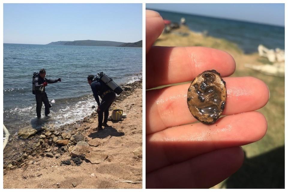 Археологи нашли перстень на подводной части древнего городища. Фото: Елена Арсентьева