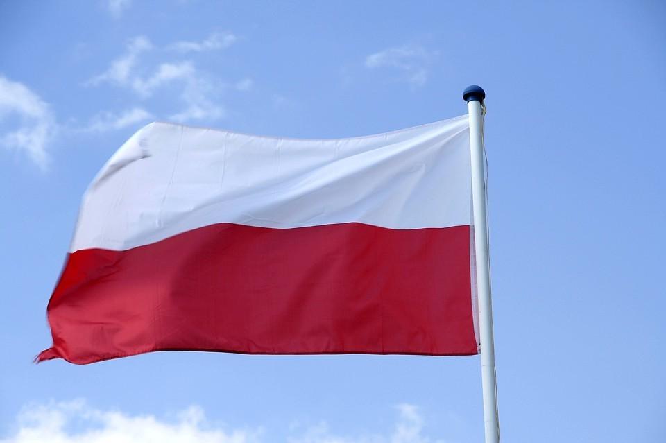 """Экс-глава МИД Польши раскритиковал позицию США и Германии по """"Северному потоку - 2"""""""