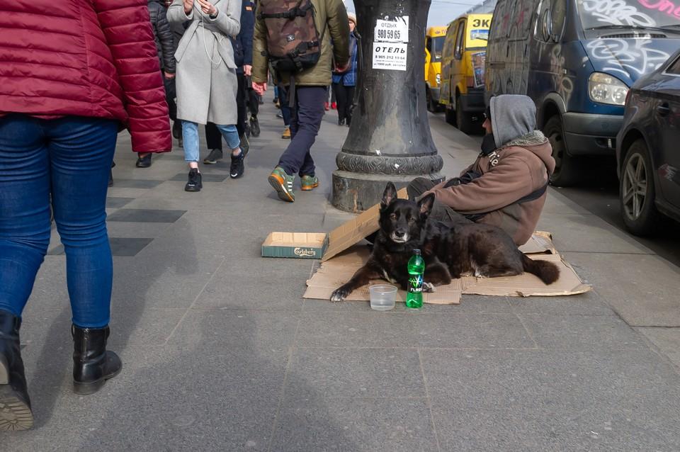 Петербургский приют ищет способ вакцинировать от ковида всех бездомных