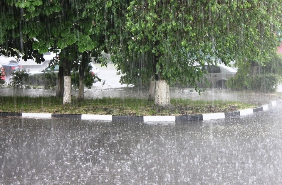 Ночью дожди, местами сильные, днем местами кратковременные дожди.