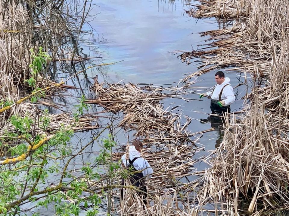 В Тульской области ликвидирован разлив дизельного топлива на водохранилище