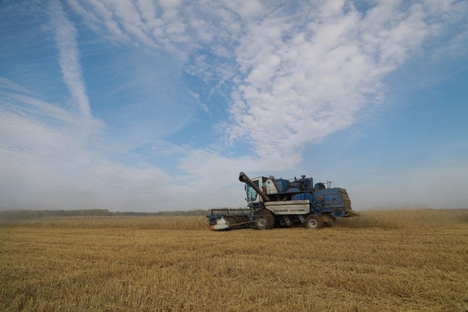 Минсельхоз Белоруссии готов перенаправить экспорт продуктов в Россию в случае санкций