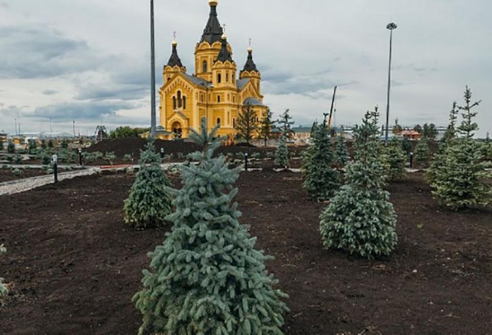 Благоустройство Окской набережной идет в Нижнем Новгороде. ФОТО: ИРГСНО