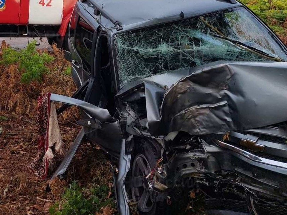 Пострадавший умер на месте происшествия до приезда скорой помощи.