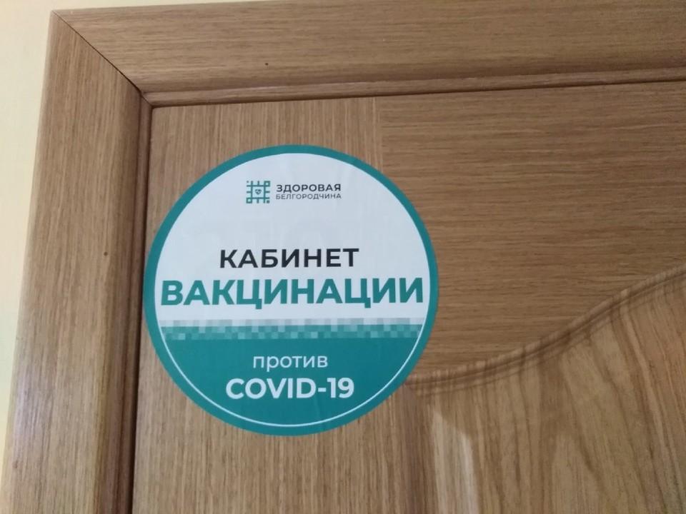 Пока только три крупных муниципалитета не достигли плановых показателей: Белгород – 66,5 процентов, Старый Оскол – 79,7 и Губкин – 84,4.
