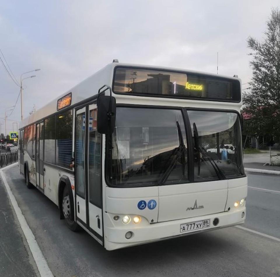 Фото: департамент транспорта, связи и систем жизнеобеспечения Пуровского района