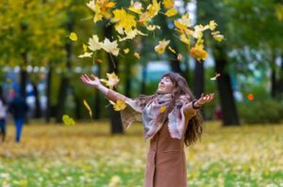 По-летнему тепло будет в Томске в первой декаде сентября.
