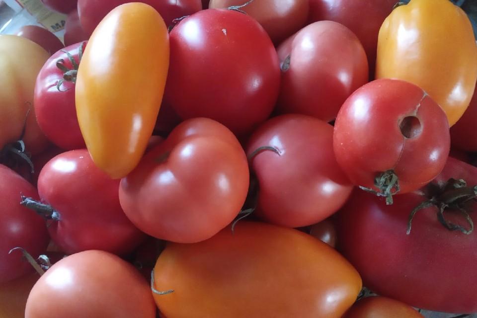 В Россию разрешили ввозить белорусские помидоры и перцы.