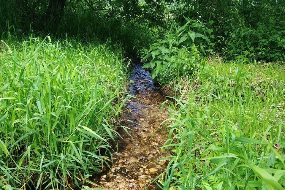Советуем липчанам заранее запастись водой