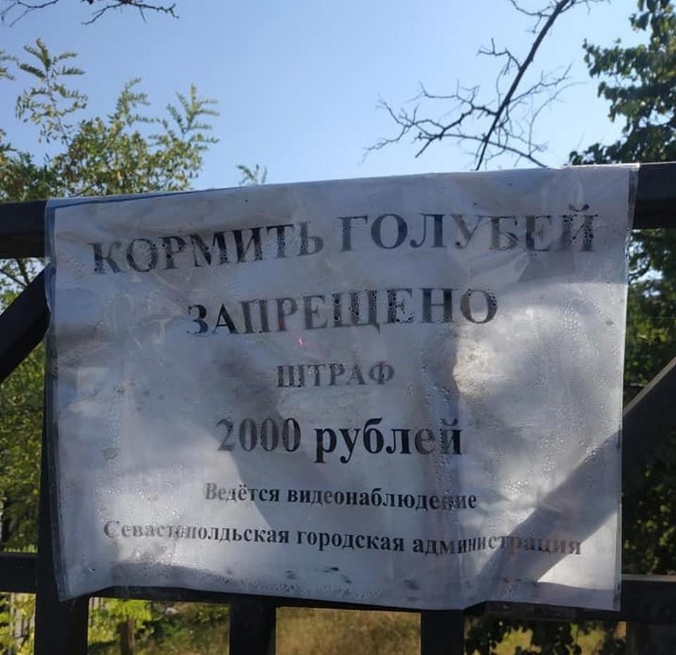 Фото: страница Алексея Григорьева в Facebook