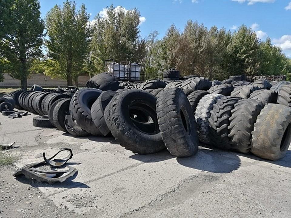 За два месяца на свалках собрали 50 тонн старых шин. Фото: АВО