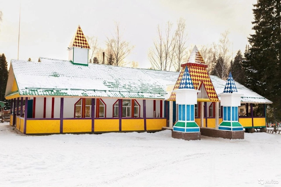 Парк развлечений продают за 30-35 миллионов рублей. Фото: avito.ru