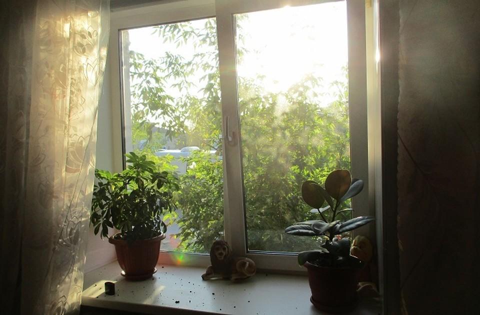 Хозяйка квартиры обнаружила, что цветочный горшок, который стоял на подоконнике, валяется на полу. Фото: МО МВД России «Верхнепышминский»