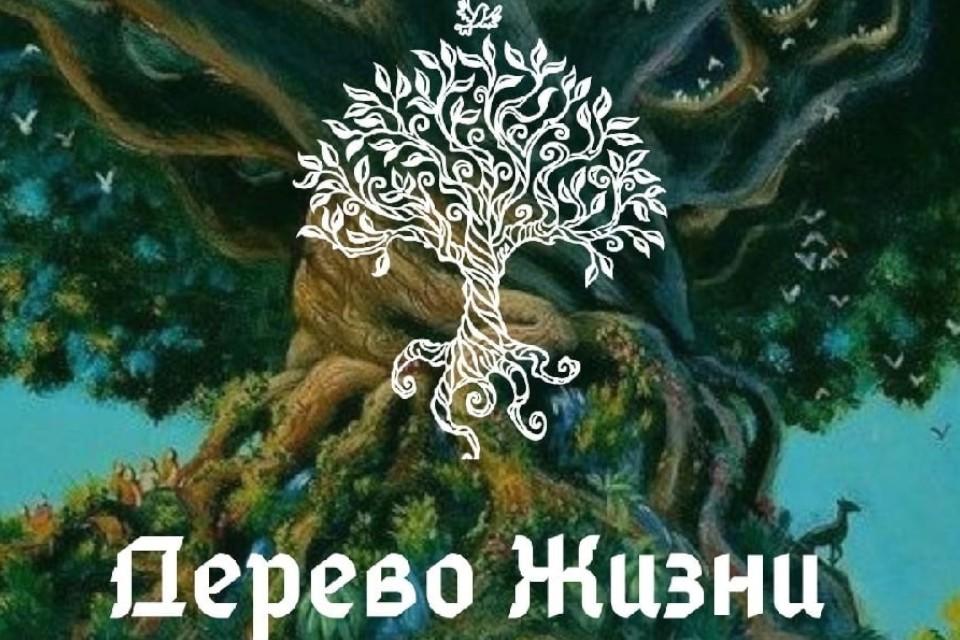 """Волшебства хватит на всех. Фото: ежегодный сказочно-литературный фестиваль """"Дерево жизни"""""""