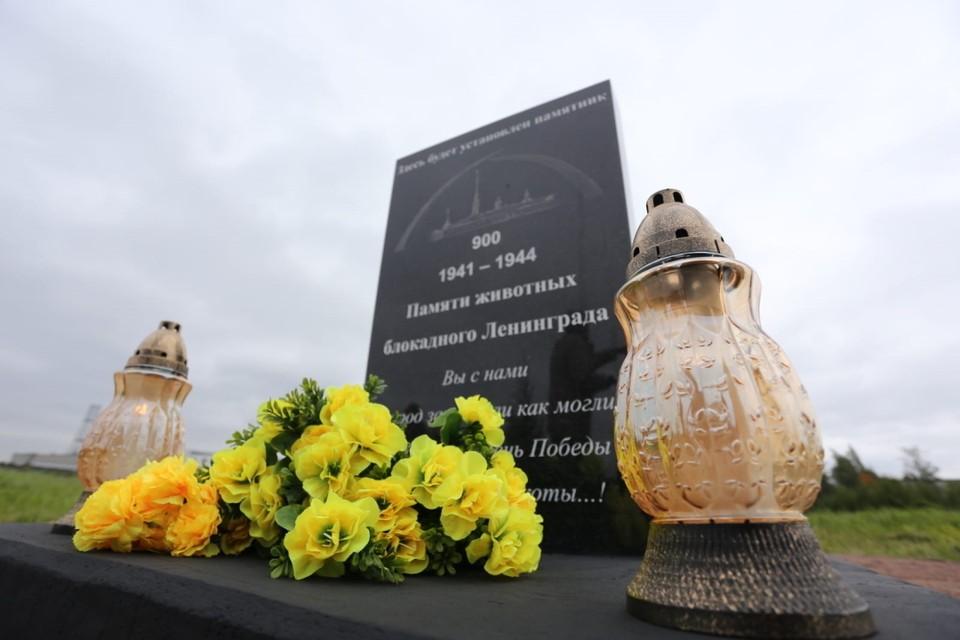 В Петербурге установят памятник животным, помогавшим горожанам во время блокады Ленинграда. Фото: Смольный