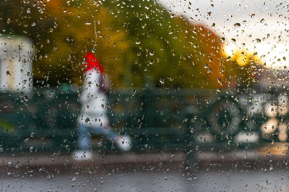 Тепло и дожди придут в Петербург 9 сентября