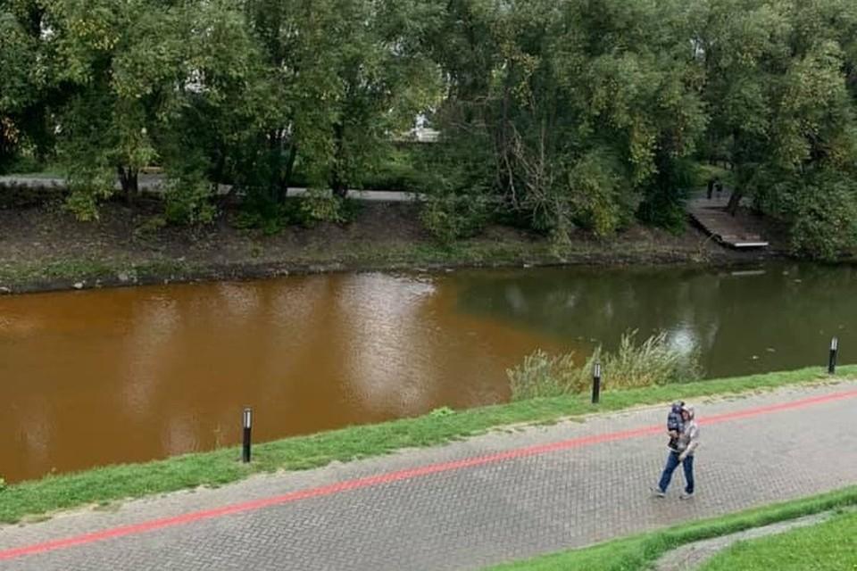 Горожане забили тревогу, заметив странный цвет Исети Фото: facebook.com/zhukov.online