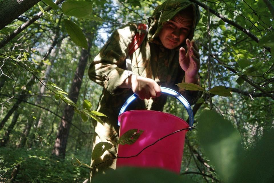 14 человек продолжают разыскивать в лесах Иркутской области