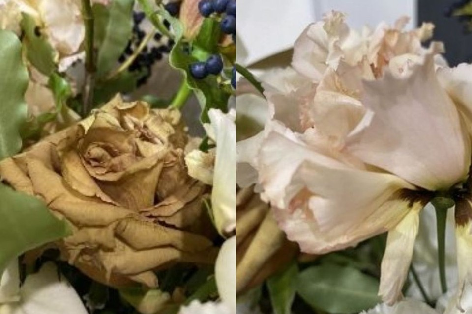 Цветы были в ужасном состоянии. Фото: «Flamp».