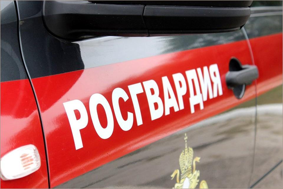 Фото: Управление Росгвардии по Брянской области.