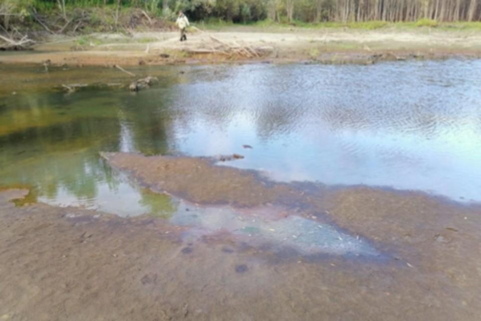 Загрязнение обнаружили на береговой линии. Фото: ГУ МЧС России по НСО