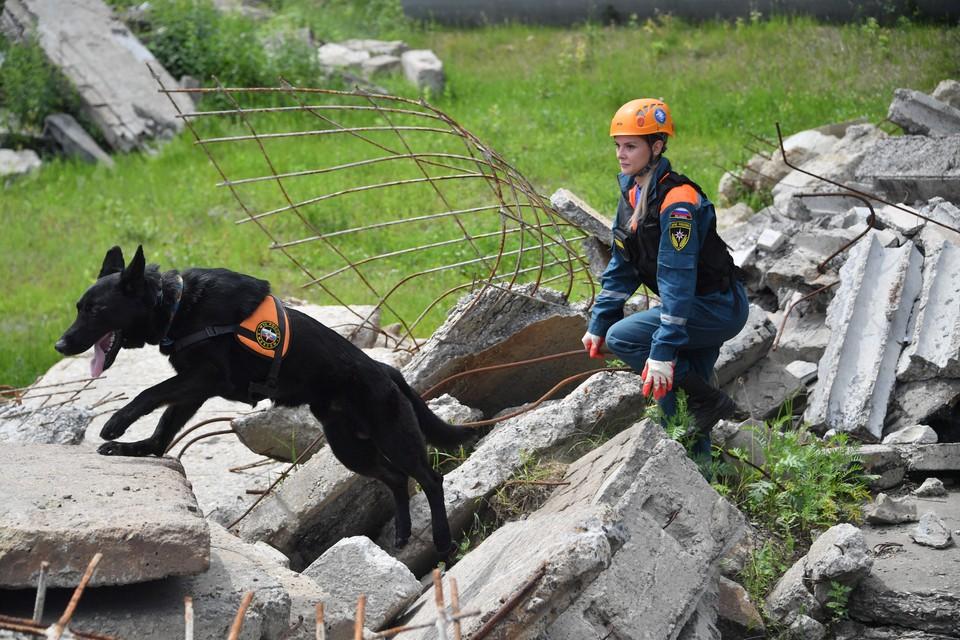 Сотрудники региональной инспекции труда выясняют все обстоятельства произошедшего