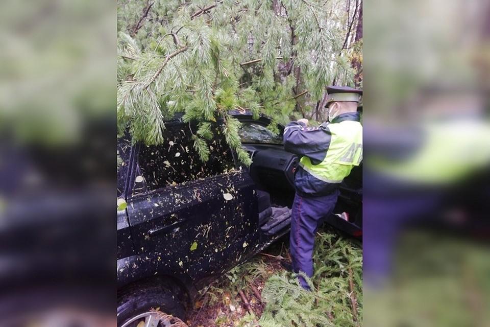 Водитель съехал с проезжей части, так как не справился с управлением при обгоне Фото: УГИБДД по Свердловской области