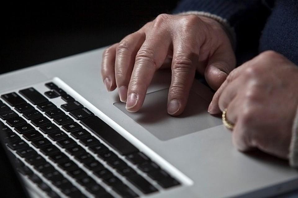 Директор Лиги безопасного интернета рассказала о популярных фейках перед выборами