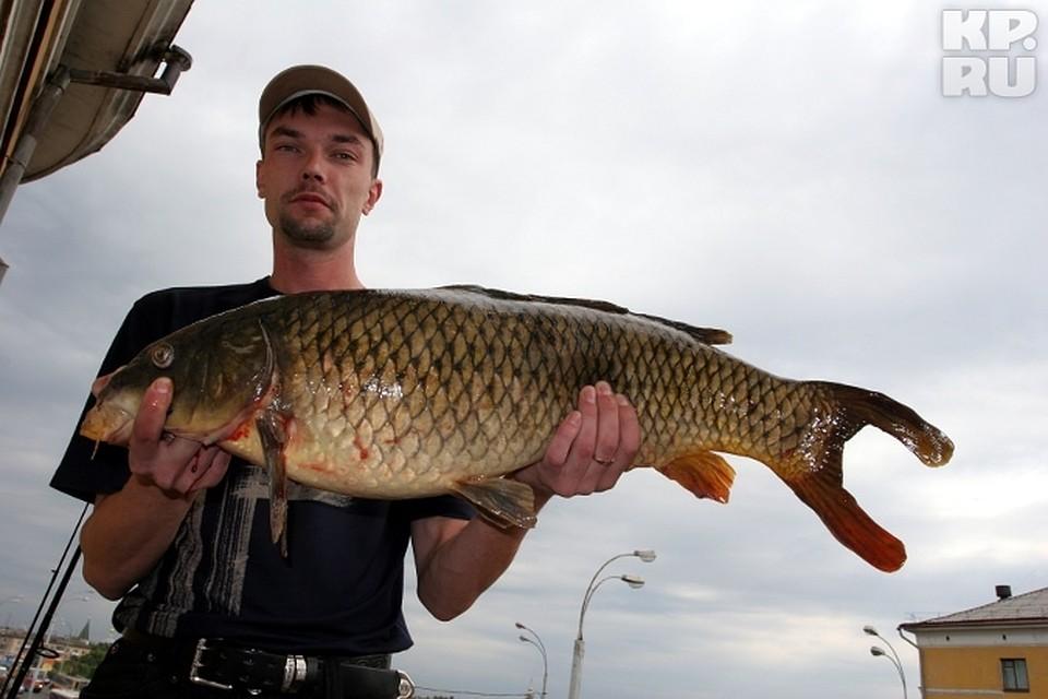 ловля рыбы в апреле в тверской области