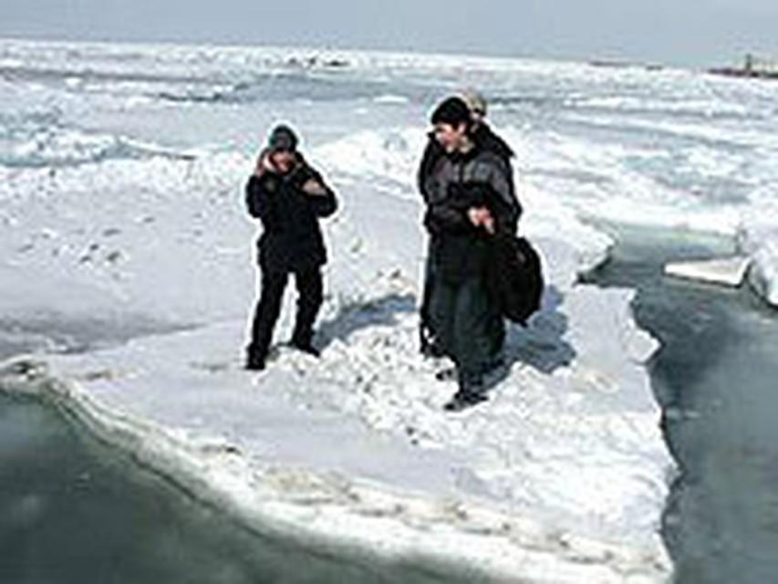 оценить отношения сводка онлайн движение льда на амуре 2016 красивая