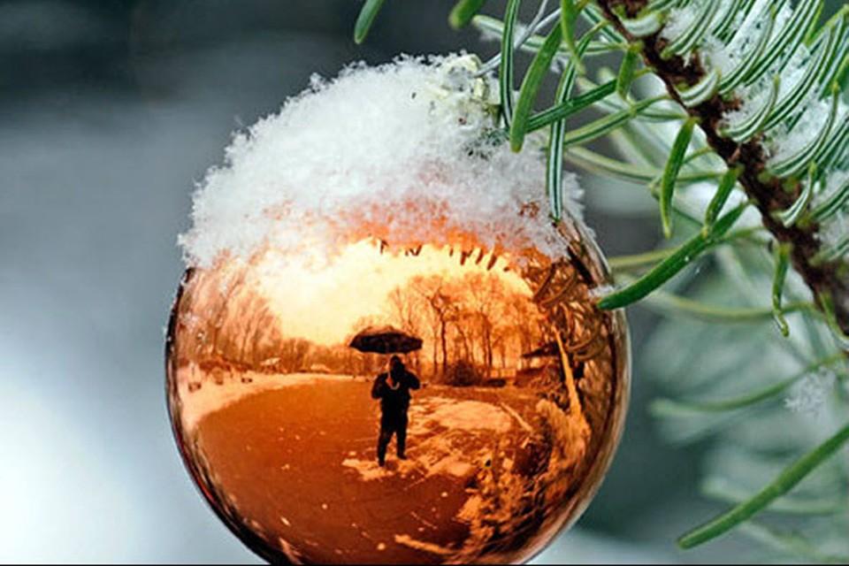 В этом году нас ждет мягкая зима