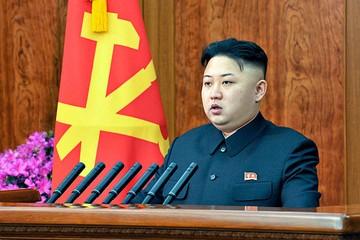 Ради ядерной программы Пхеньян торгует слоновой костью и фальшивыми сигаретами