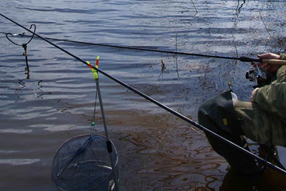 рыбная ловля в брянском районе